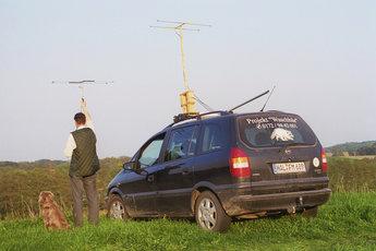 GWN-Mitglied bei der telemetrischen Verfolgung eines sendermarkierten Waschbären im Müritz-Nationalpark