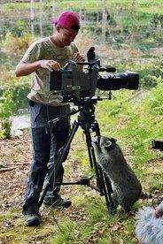 Dreharbeiten für Fernsehbeitrag über Waschbären im Müritz-Nationalpark