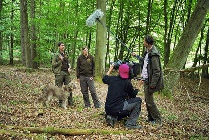 Filmaufnahmen über Waschbären im Müritz-Nationalpark